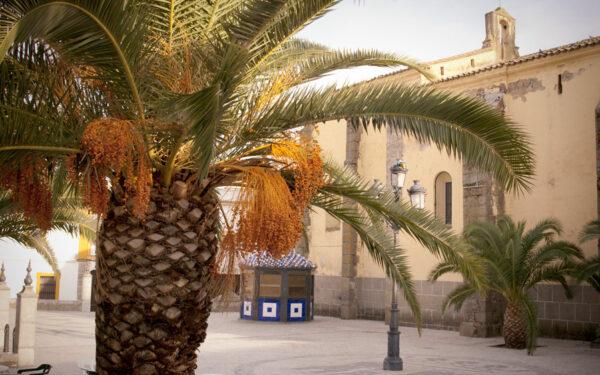 medina_plaza2