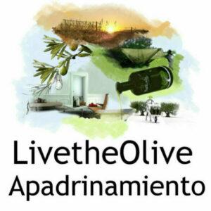 LiveTheOlive. Apadrina un olivo