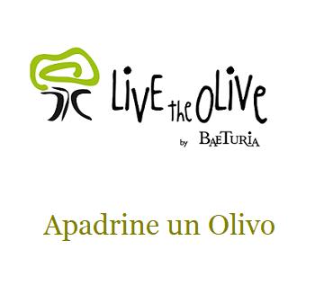 LivetheOlive